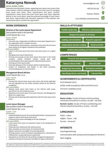 Profesjonalne CV wzór